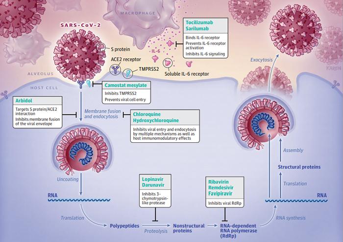 Nuovo coronavirus: il punto sulle terapie in uso